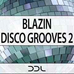 Blazin Disco Grooves 2 <br><br>&#8211; 10 Themes (Wav+MIDI), 234 MB, 24 Bit Wavs.