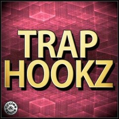 Trap Hookz <br><br>&#8211; 10 Contruction Kits (168 Wav Loops &#038; MIDI Files), 501 MB, 24 Bit Wavs.