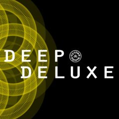 Deep Deluxe <br><br>&#8211; 15 Construction Kits (174 Wav Loops &#038; MIDI Loops), 284 MB, 24 Bit Wavs.