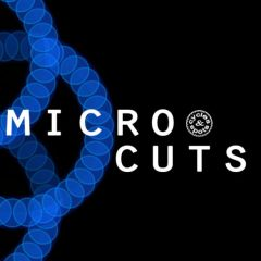 Micro Cuts <br><br>&#8211; 300 Wav Loops, 2 Bars, 319 MB, 24 Bit Wavs.