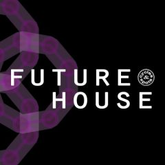 Future House <br><br>– 10 Construction Kits (143 Wav Loops & MIDI Files), 290 MB, 24 Bit Wavs.