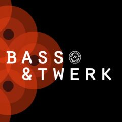 Bass &#038; Twerk <br><br>&#8211; 10 Construction Kits (175 Wav Loops &#038; MIDI Files), 350 MB, 24 Bit Wavs.