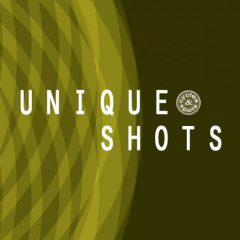 Unique Shots <br><br>&#8211; 400 One-Shots (50 Claps, 50 Clicks, 50 Cymbals, 50 Hihats, 50 Kicks, 50 Percs, 50 Snares, 50 Sonics), 250 MB, 24 Bit Wavs.