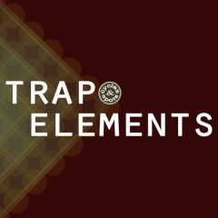 Trap Elements <br><br>&#8211; 64 Beat Layer Loops (Kick,Snare/Clap,Hihat), 20 Breaks Loops, 41 Synth Loops, 20 Beat Loops, 20 FX Loops, 20 Vocal Loops, 41 MIDI Loops, 500 MB, 24 Bit Wavs.