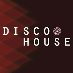 Disco House <br><br>– 10 Themes (Bass, Chord, Melody), 10 Beats (Plus No-Kick Versions), Wav + MIDI Loops, 103 Files, 248 MB, 24 Bit Wavs.
