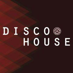 Disco House <br><br>– 10 Themes (Bass, Chord, Melody), 10 Beats (Plus No-Kick Versions), Wav + MIDI Loops, 103 Files, 248 MB, 24 Bit Wavs.