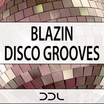 disco,download,loops,samples,music,production