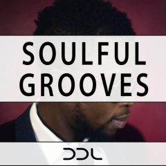 Soulful Grooves <br><br>– 10 Themes With 89 Loops (Bass, Keys, Guitar, Full Beats, Kicks, Snares/Claps,Hihats,Cymbals), 35 MIDI Loops, 262 MB, 24 Bit Wavs.