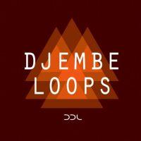 djembe loops,percussion loops,djembe rhythms,native ntruments kontakt,kontakt patches,rhythm loops