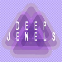 deeper loops,deep house loops,classic house lloops,producer loops,house samples,deep samples