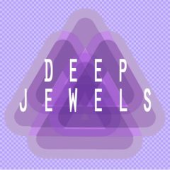 Deep Jewels <br><br>– 10 Construction Kits (115 Wav Loops & MIDI Files), 250 MB, 24 Bit Wavs.