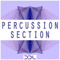 percussion loops,perc loops