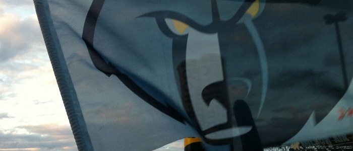 Grizz Flag