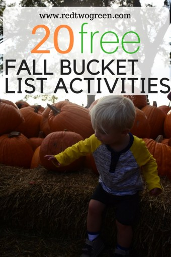 cheap or free fall activities