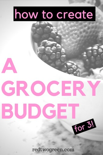 grocery budget for 3