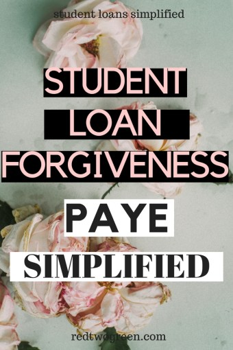everything you need to know about PAYE