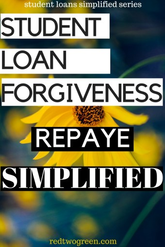 everything you need to know about REPAYE