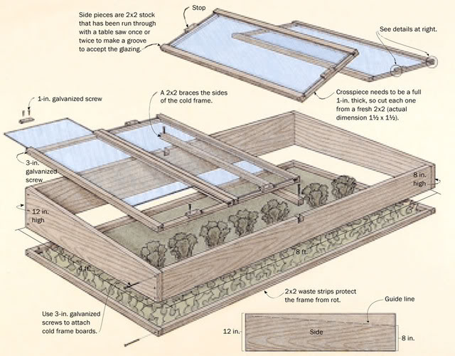 Choosing A Cold Frame That Works for You & 5 Plants That Defy the Snow, Italian flat-leaf parsley in the snow, cold frame plans, DIY plans, raised bed with glass