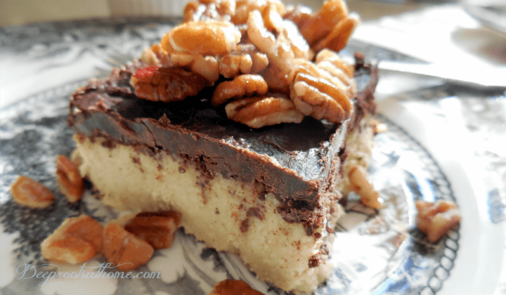 Pumpkin Cheesecake {Grain & Gluten-Free}, ingredients, recipe, vegan, cashews, warming spices, raw, coconut oil based, soaking cashews, warming, cozy food, dessert, fancy, chocolate coating, date night, rich sweet treat, healthy dessert,
