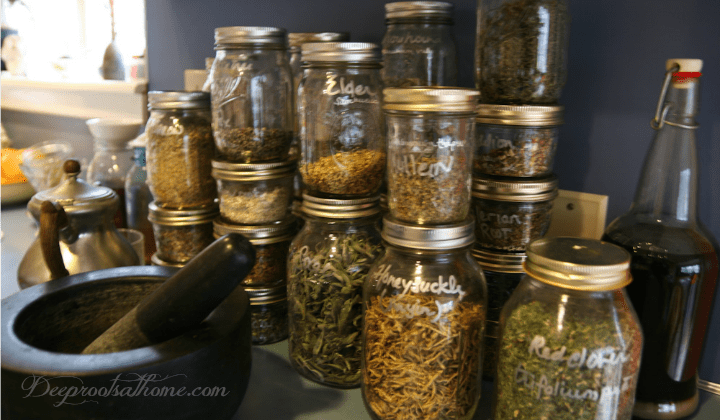 120+ Herbs to Avoid During Pregnancy and Breastfeeding, herbal remedies, midwife, herbalist, generally regarded as safe, GRAS, pregnancy, culinary herbs, cooking herbs, medicinal amounts, garlic, thyme, ginger, turmeric, sage, basil, parsley, rosemary, Angelica Root, Lemon Balm, Basil, Lemongrass, Beth Root, Licorice Root, Birthroot, Lobelia, Black Cohosh, Loveage, Black Walnut, Ma-Huang, Blue Cohosh, Blessed Thistle, Bladderwrack, Marijuana, lactation, red raspberry leaf, peppermint leaf, stinging nettles, ginger root, slippery elm bark, oats, oat straw, capsicum, cayenne, hot pepper, National Medicines Database,nausea, vomiting, morning sickness, heartburn, anxiety, restlessness, damdelion, German chamomile, nettles, pregnancy tonic, pregnancy tea, research, Mommy Diagnostics, The Naturally Healthy Pregnancy, Naturally Healthy Woman, Shonda Parker, books, The American Botanical Council, HerbMed, National Center for Complementary and Integrative Medicine