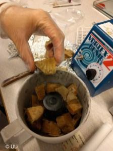 Deep-sea sponge is ready for blending
