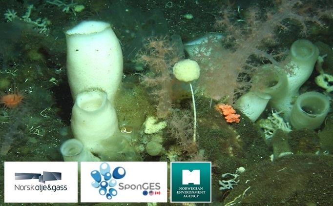 Project SponGES meets stakeholders