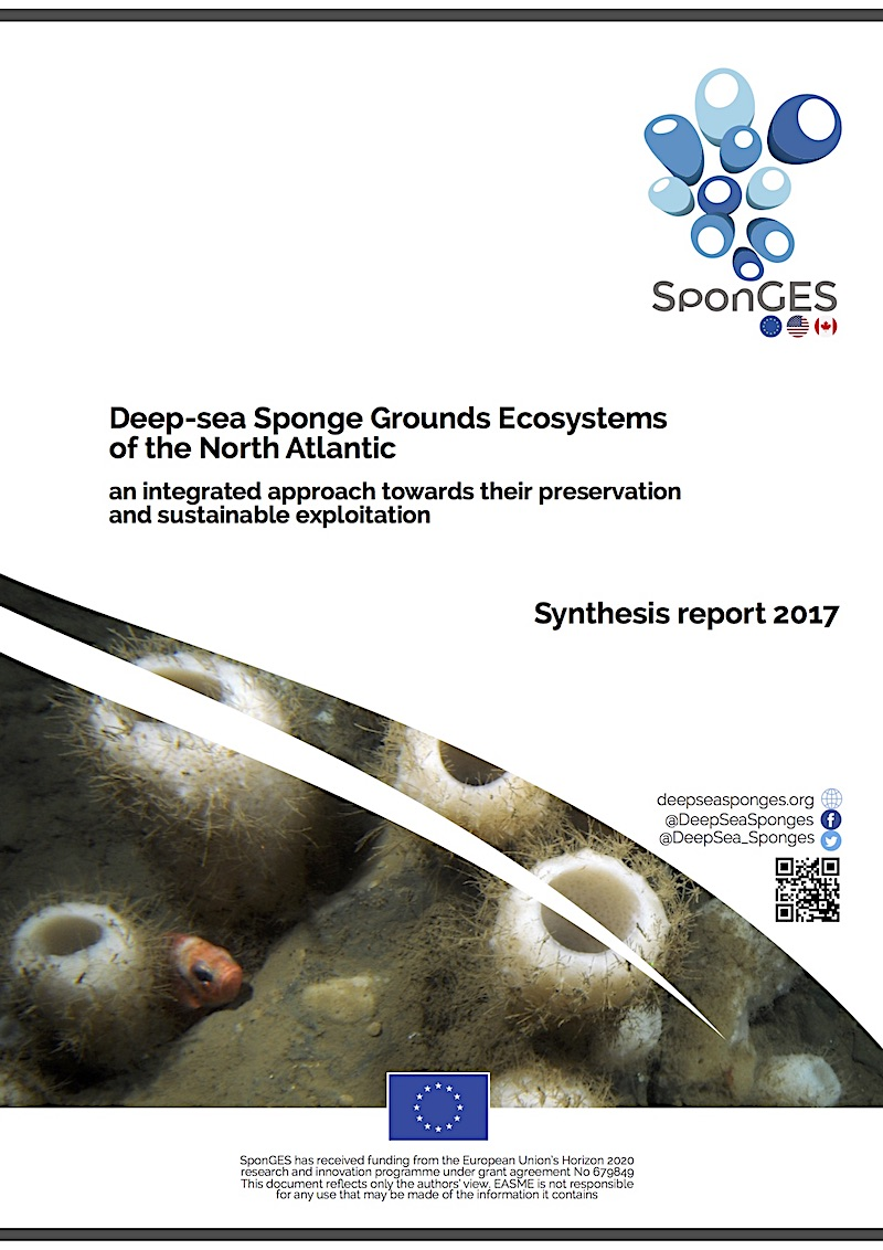 SponGES synthesis report 2017