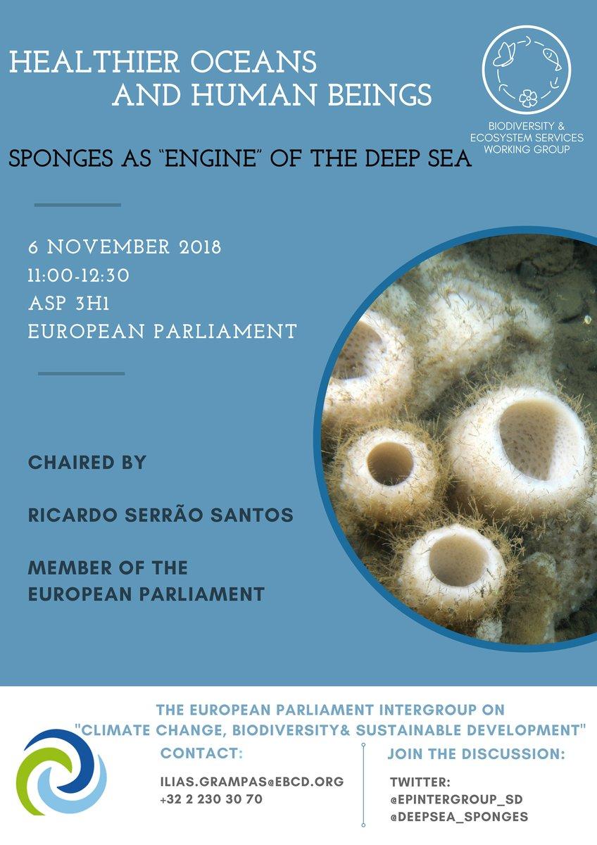 SponGES at the European Parliament