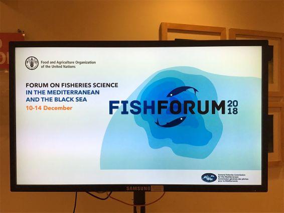 FishForum 2018, SponGES