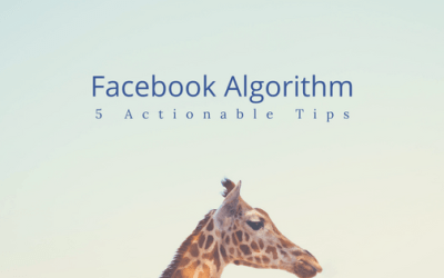 5 Tips to Beat the Facebook Algorithm