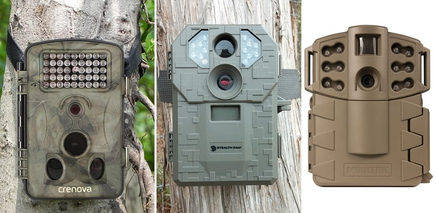 Best Trail Camera 2020.Best Trail Camera 75 Top Rated For Scouting