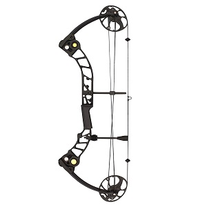 best hunting compound bow