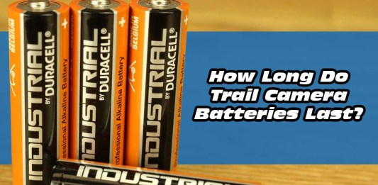 How Long Do Trail Camera Batteries Last?