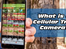 What is a Cellular Trail Camera?