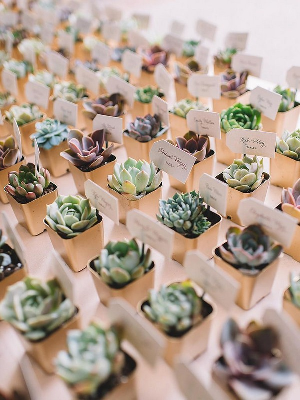 rustic succulent wedding favors