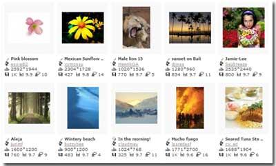 Come trovare foto e immagini per il blog ?