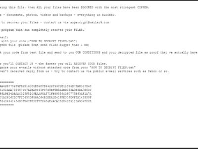 Cryptolocker : riscatto informatico …