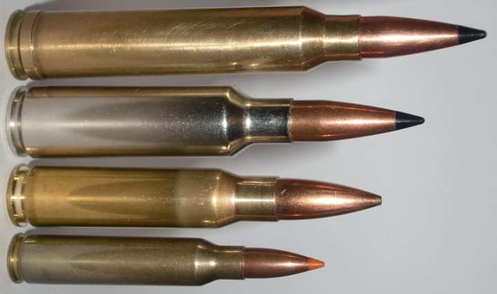 Comparison between cartridges. From top to bottom: .300 Winchester Magnum, .300 Winchester Short Magnum, .308 Winchester, .223 Remington. Photo by Dt3ft