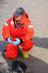 Deepwater Horizon Cleanup Response