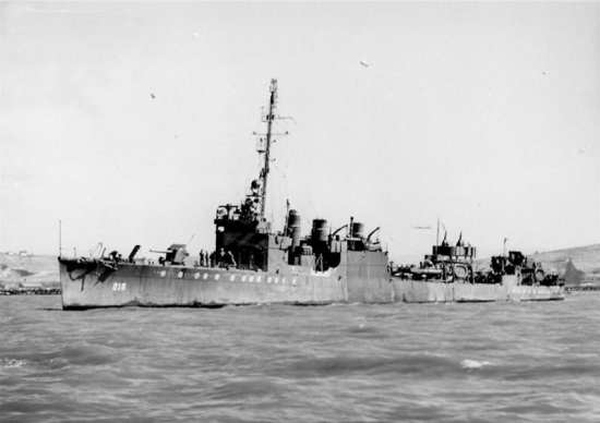 USS Parrott DD-218