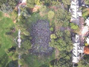 Occupy UC Davis from above