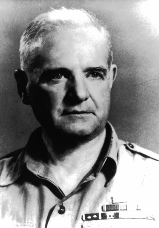 Donovan portrait