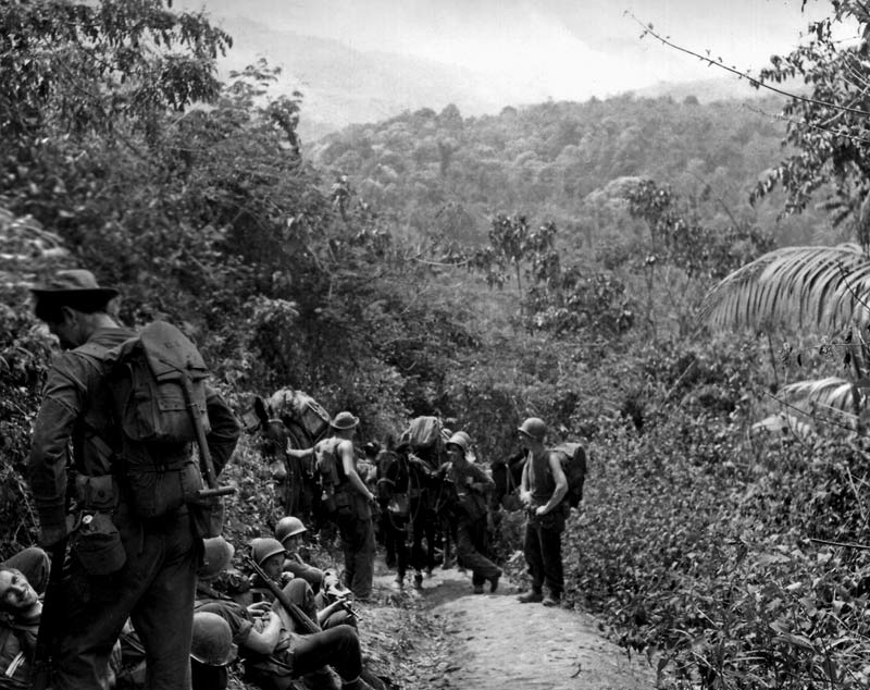 Rangers In Burma