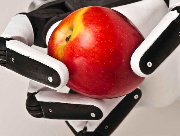 Robotic hand and apple