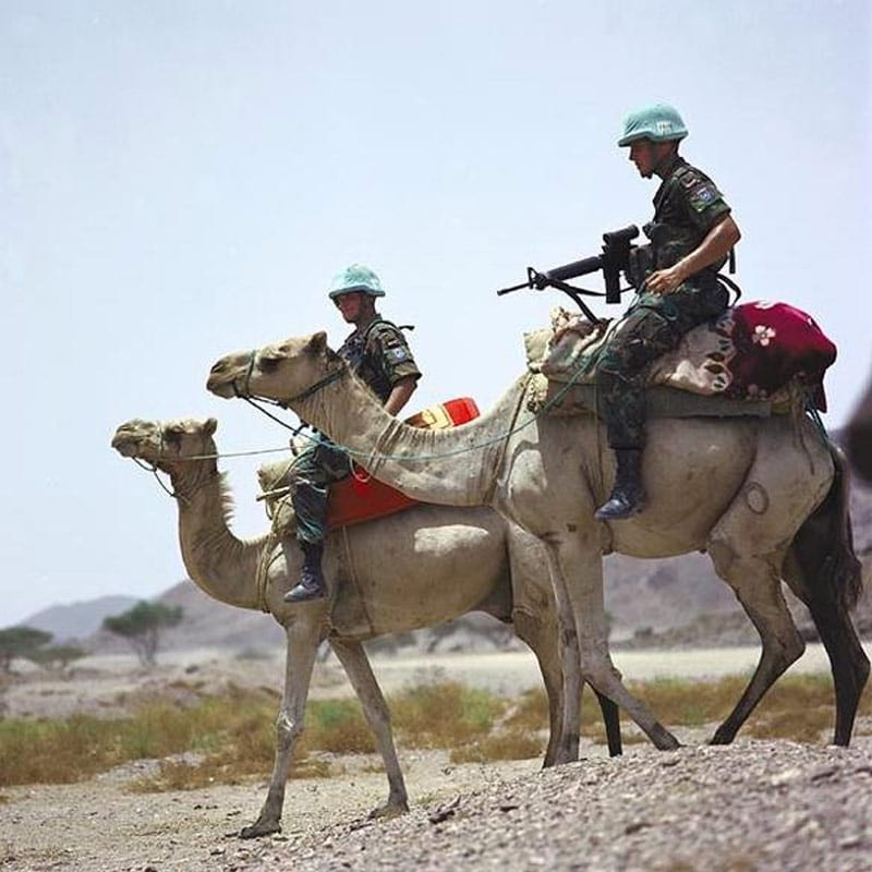 UN Camelborne Soldiers in Eritrea
