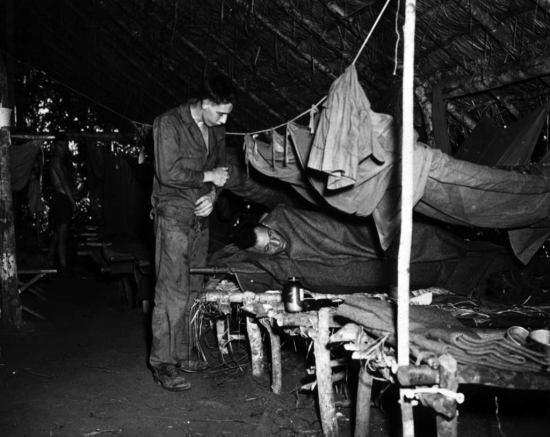 World War II Malaria
