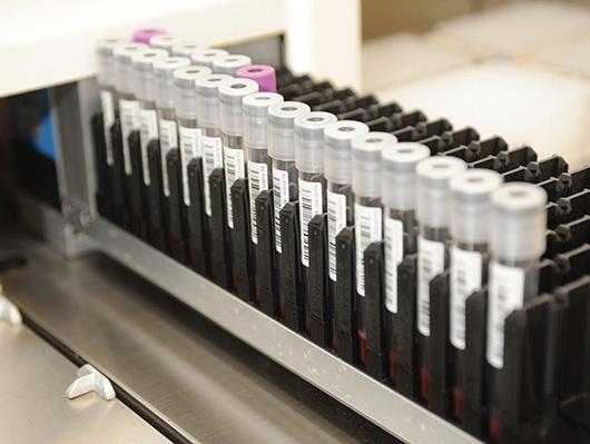 To date, about 850,000 veterans have donated genetic samples – vials of blood – through the MVP.