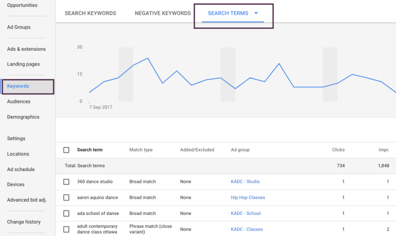 Screen Shot of Google Ads Search Terms