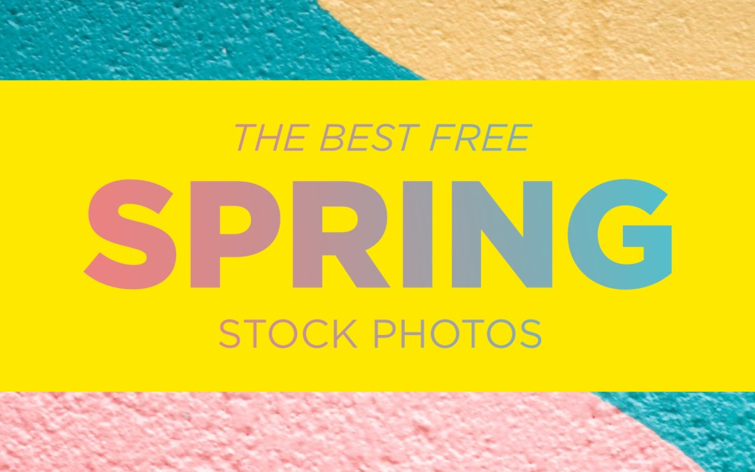 The Best Free Spring Stock Photos