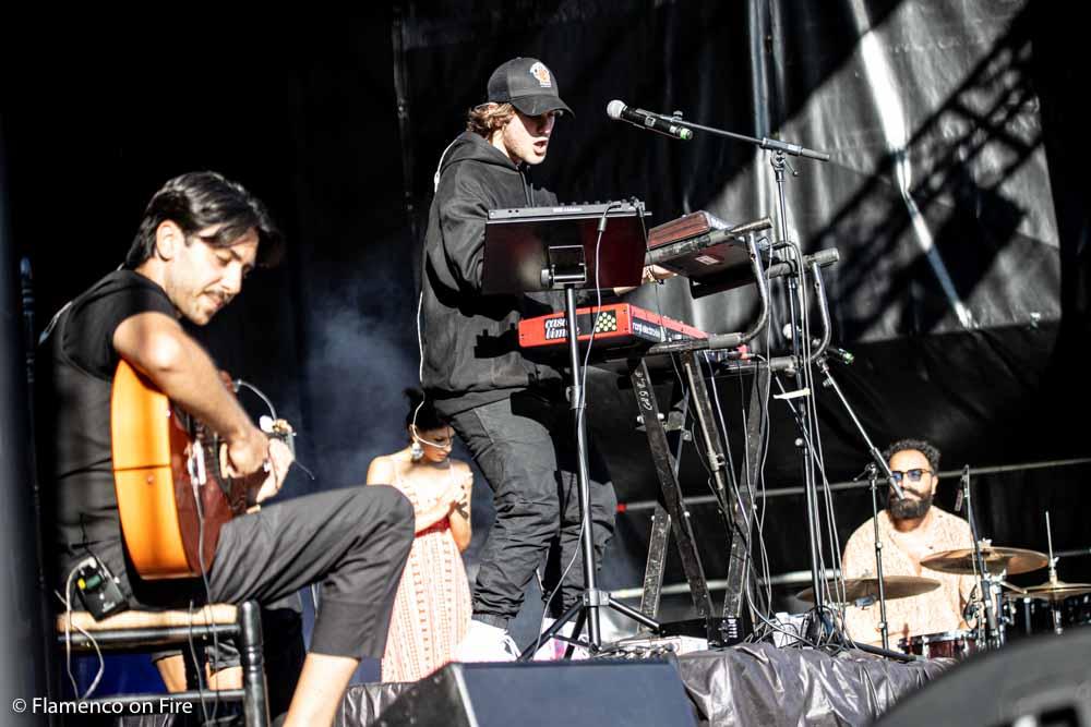 Frank Maza - Flamenco on Fire